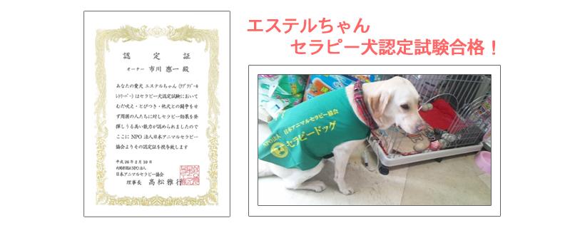 セラピー犬認定試験合格